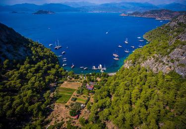 Citrus Springs Bay,Light Tours Vacation Activities, Holiday Locations,About Marmaris 76