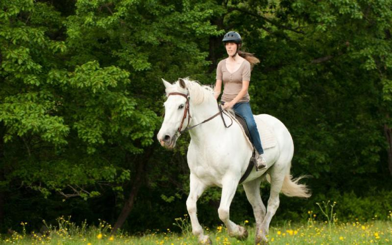 Fethiye Horse Riding hisaronu marmaris kayaköy light tours daily tours