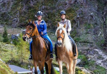 Fethiye Horse Riding hisaronu marmaris kayaköy light tours daily tours,Light Tours Daily Tours, Discount Tours, Package Tours,Fethiye Horse Riding 200