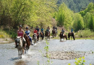 Fethiye Horse Riding hisaronu marmaris kayaköy light tours daily tours,Light Tours Daily Tours, Discount Tours, Package Tours,Fethiye Horse Tour Prices 198