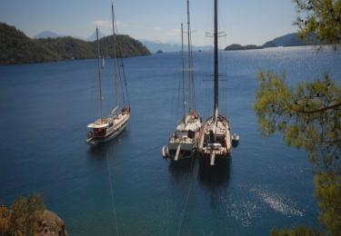 Bodrum Gökova Bodrum Air Conditioned Cabin Cruise - Blue Cruise,Light Tours Blue Cruise, Blue Cruise, Discount Tours 94
