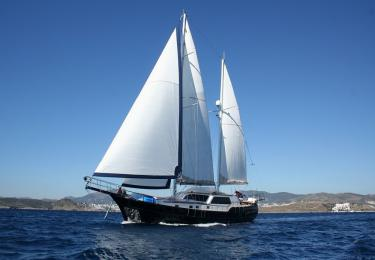 Didi gulet Bodrum yacht charter light tours yachts blue tour